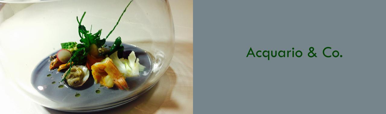 Acquario & Co.