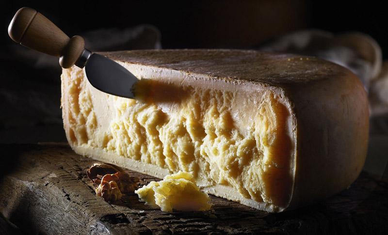 mondo dei formaggi