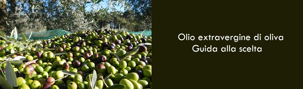 Finding the Best Extra Virgin Olive Oil