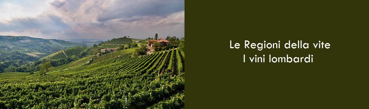 Le Regioni della vite: i vini lombardi