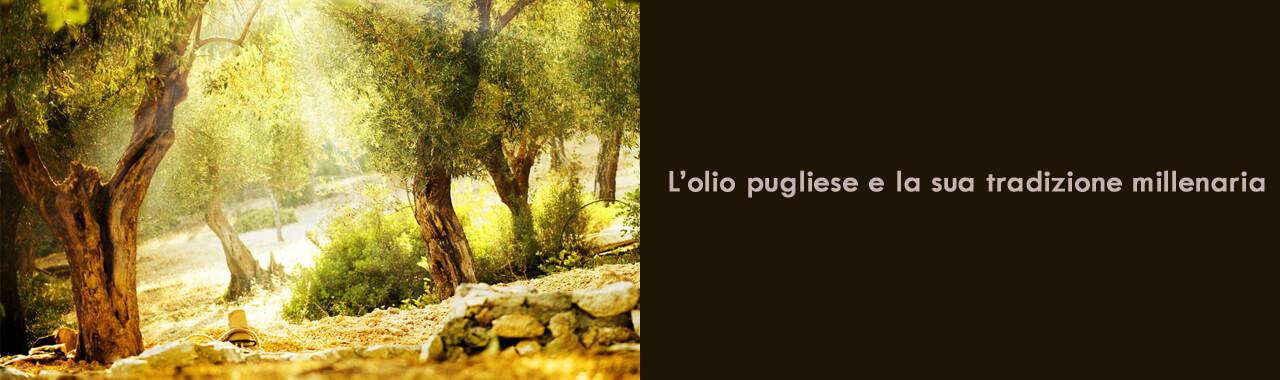 Puglia's Liquid Gold