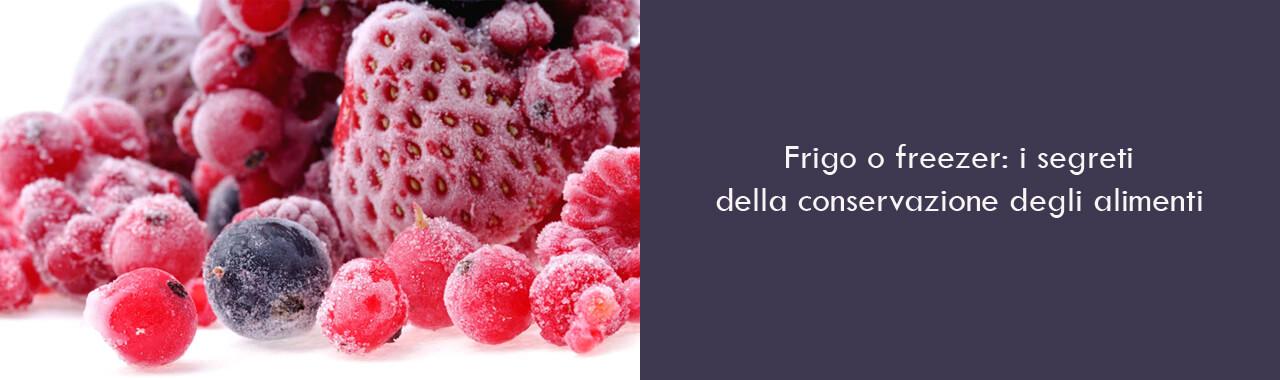 Frigo o freezer: i segreti della conservazione degli alimenti