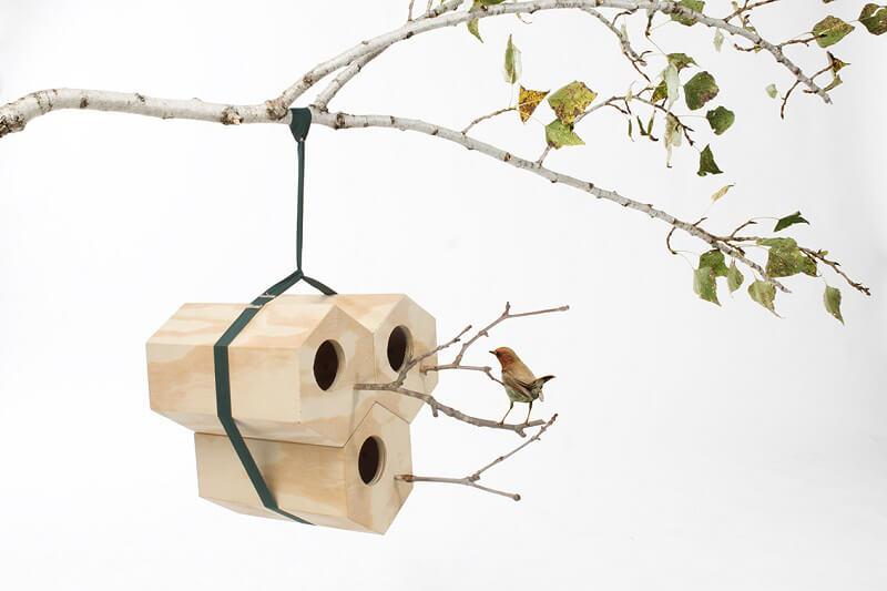 inspired in barcelona Andreu Carulla_Neightbird di Andreu Carulla