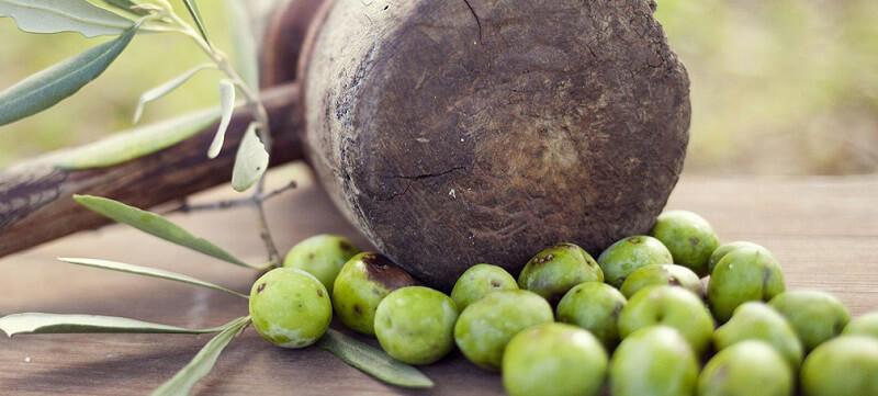 oliveto menfi azienda planeta