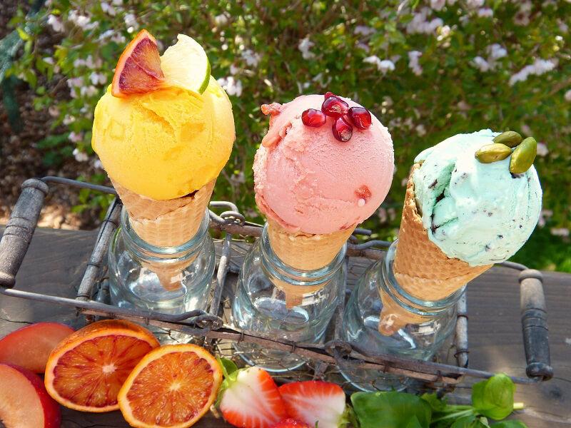 gelatieri per il gelato piante officinali