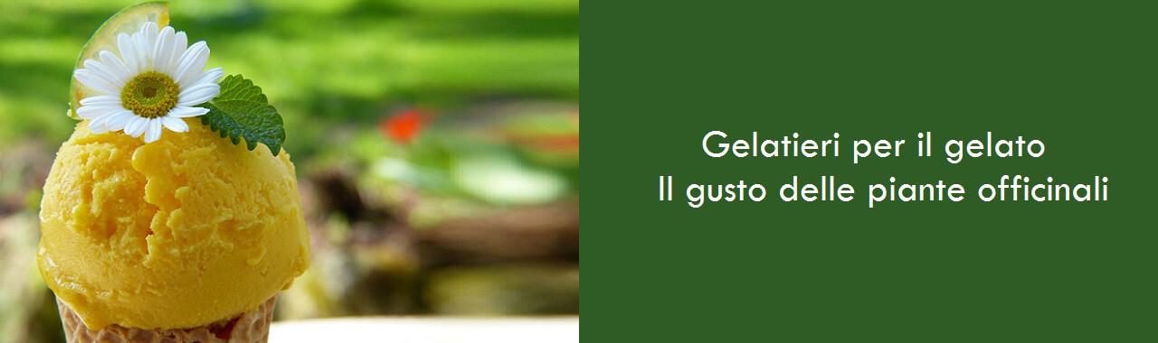Gelatieri per il gelato: il gusto delle piante officinali
