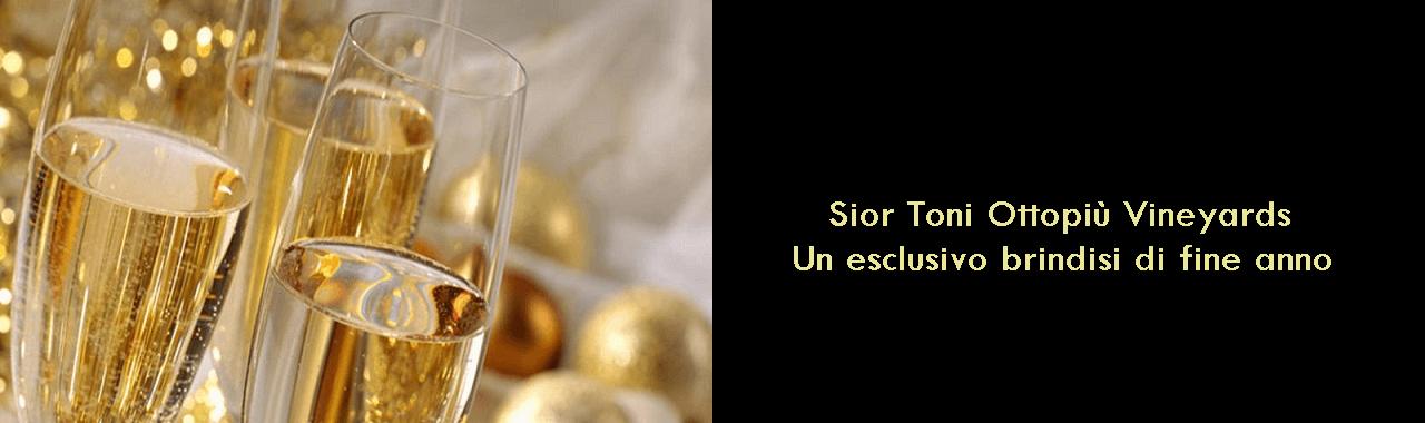 Sior Toni Ottopiù Vineyards: un esclusivo brindisi di fine anno
