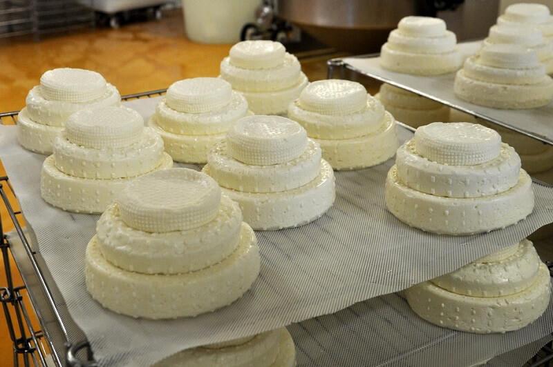 Montebore formaggio