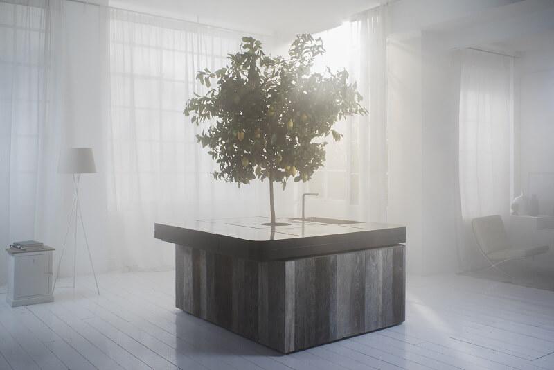 Un albero in cucina: Oasi di Aran Cucine by Stefano Boeri Cucine d ...