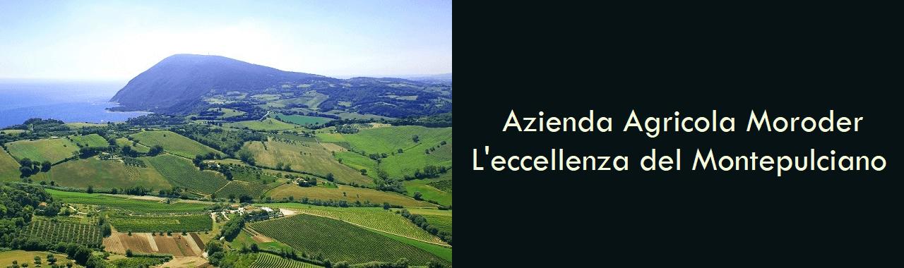 Azienda Agricola Moroder: l'eccellenza del Montepulciano
