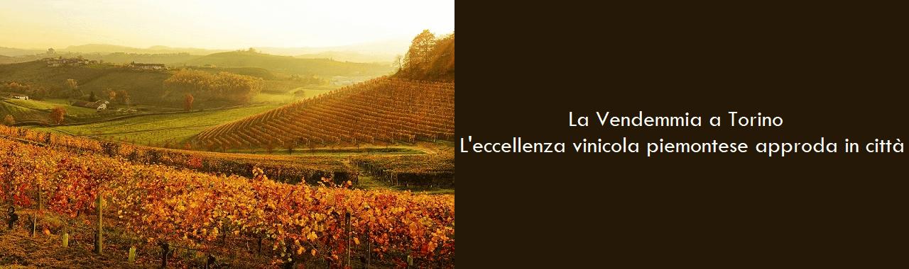 La Vendemmia a Torino: l'eccellenza vitivinicola piemontese approda in città