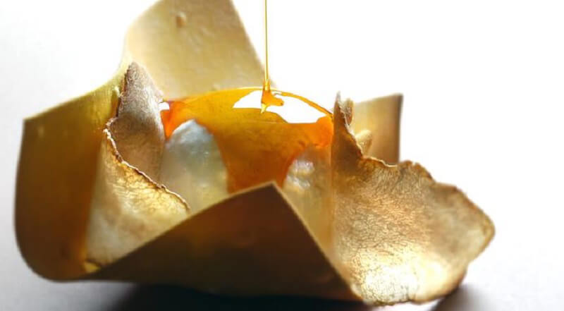 Ricette a base di tartufo