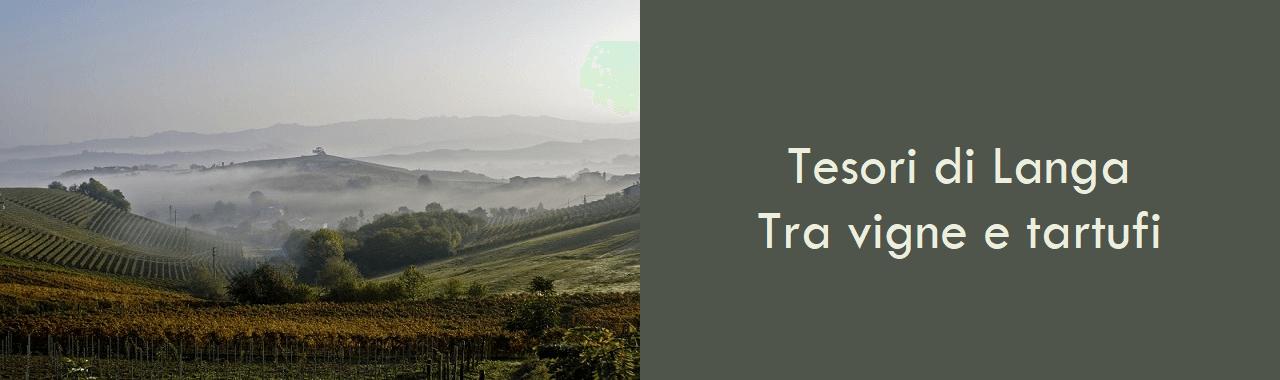 Tesori di Langa: tra vigne e tartufi