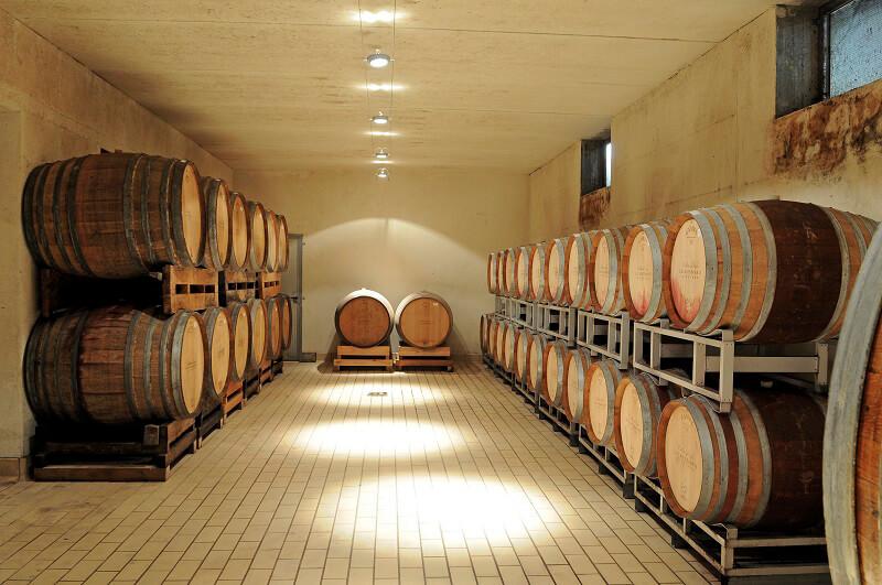 Ruché di Castagnole Monferrato Ferraris Vineyards