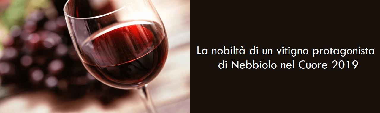 La nobiltà di un vitigno protagonista di Nebbiolo nel Cuore 2019