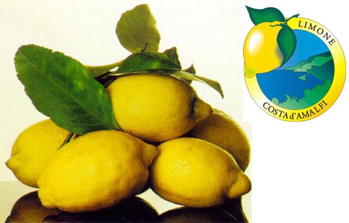 limone-costa-amalfi