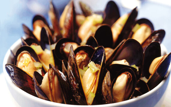 Cozze tarantine crude [Photocredit : Mariangela Martellotta]