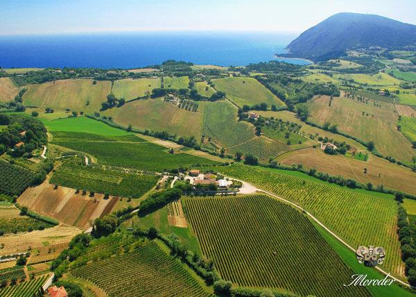 Marche:Azienda Agricola Moroder