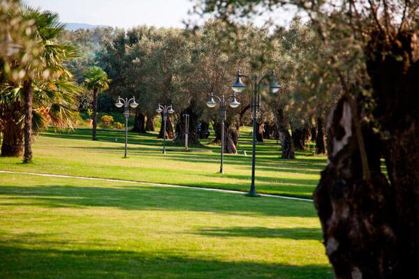 Park Hotel Uliveto Principessa - Cittanova -RC