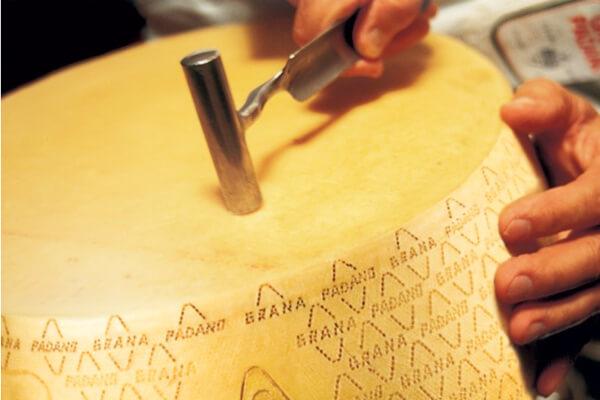 Forma Parmigiano