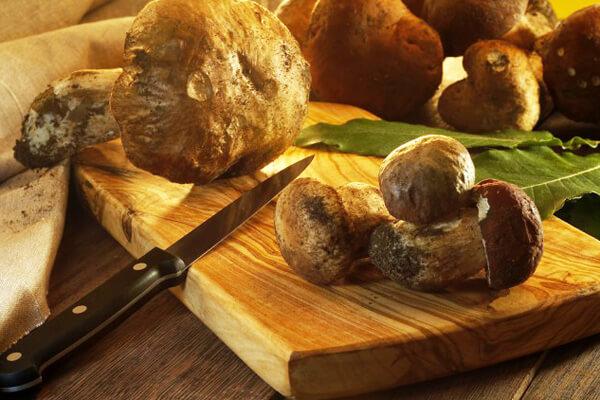 funghi-porcini MOD