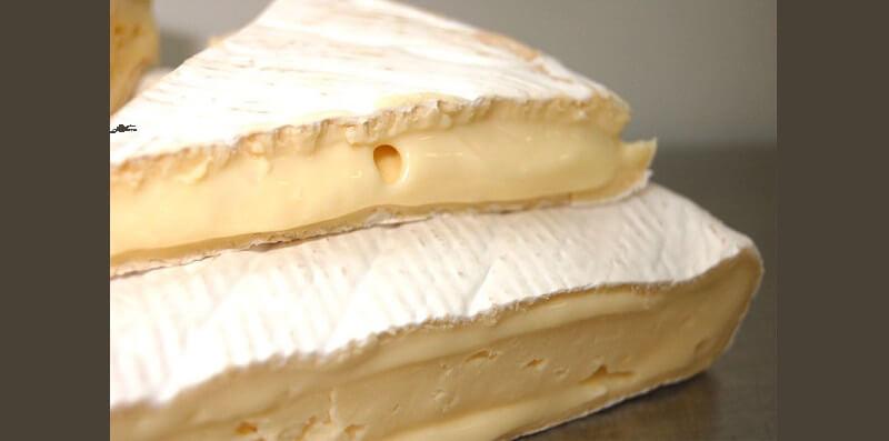 festival del formaggio