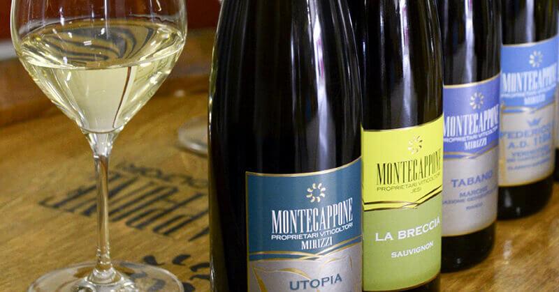 montecappone vini marche