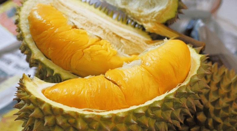 durian frutto