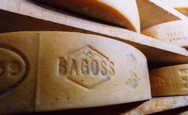 formaggio bagòss