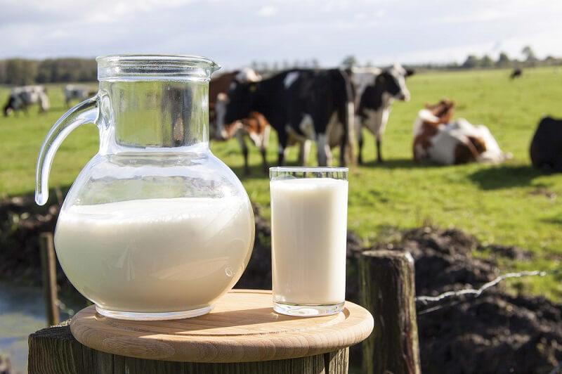 filiera del latte del lazio