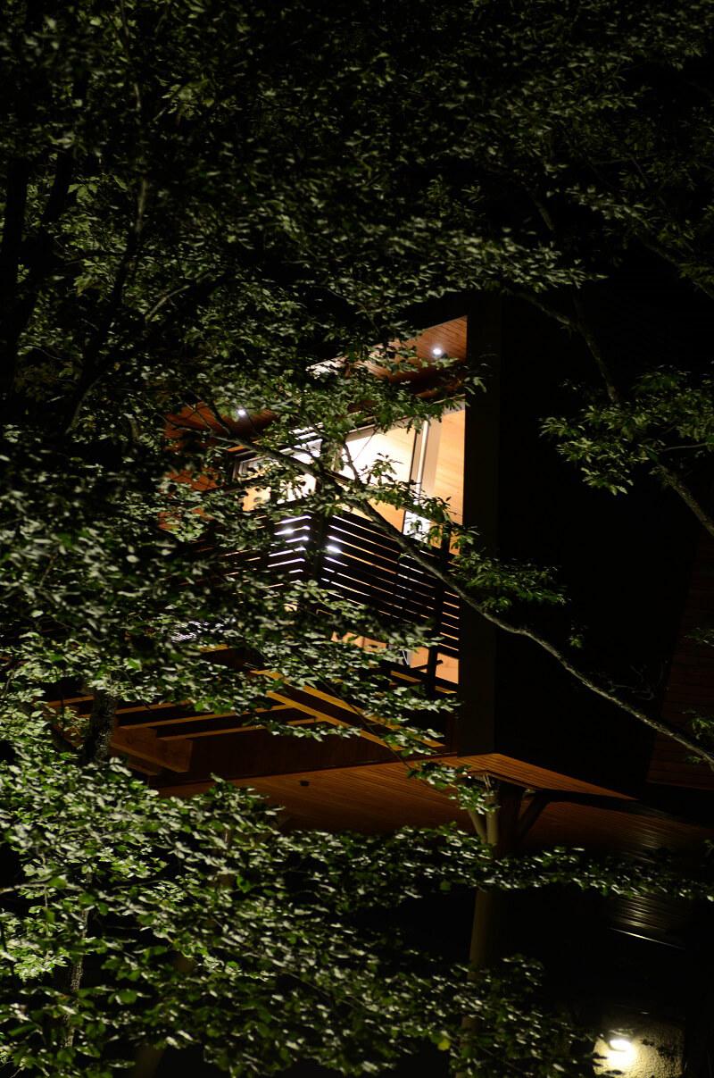 Suite tra gli alberi Park hotel Olimpia