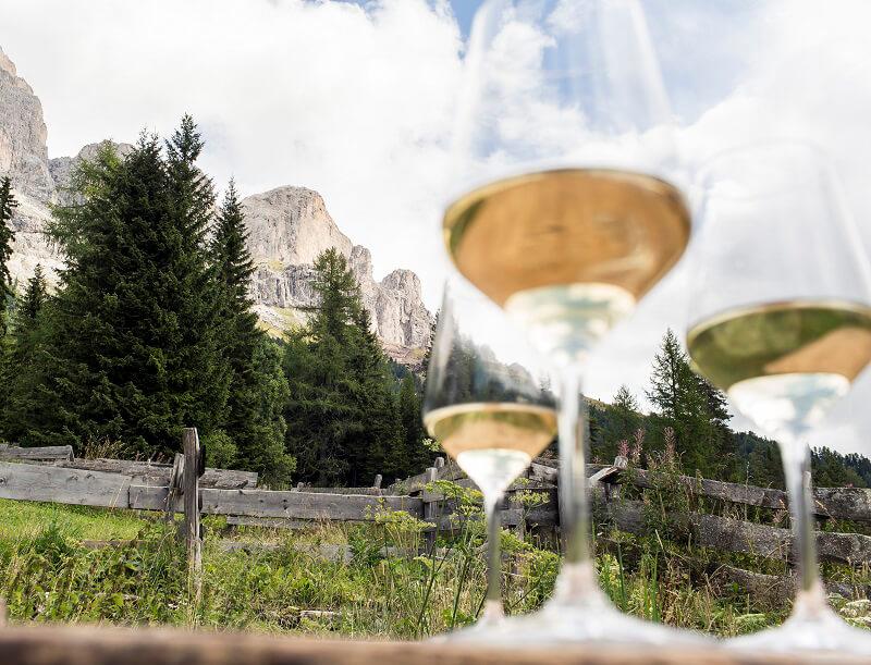 I vini dell'Alto Adige in Tour