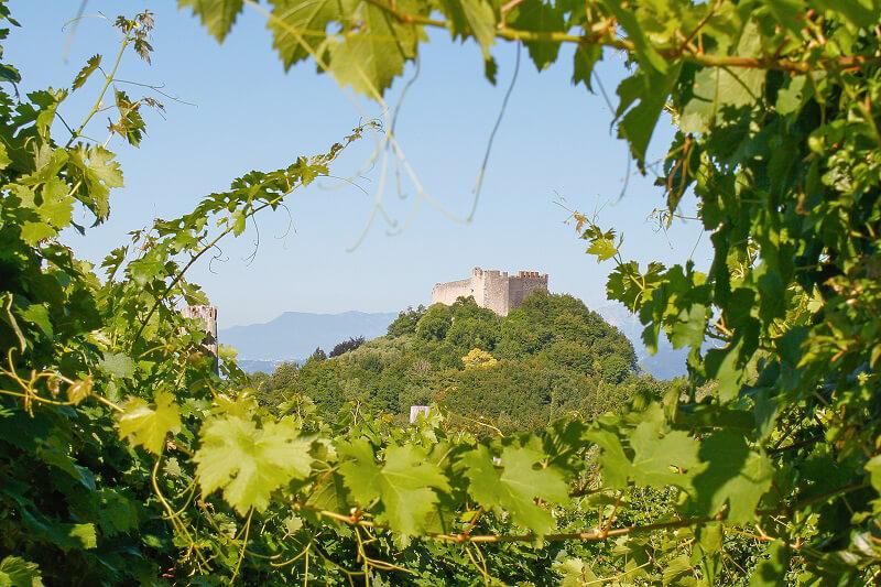 Prosecco Superiore Rocca Asolo
